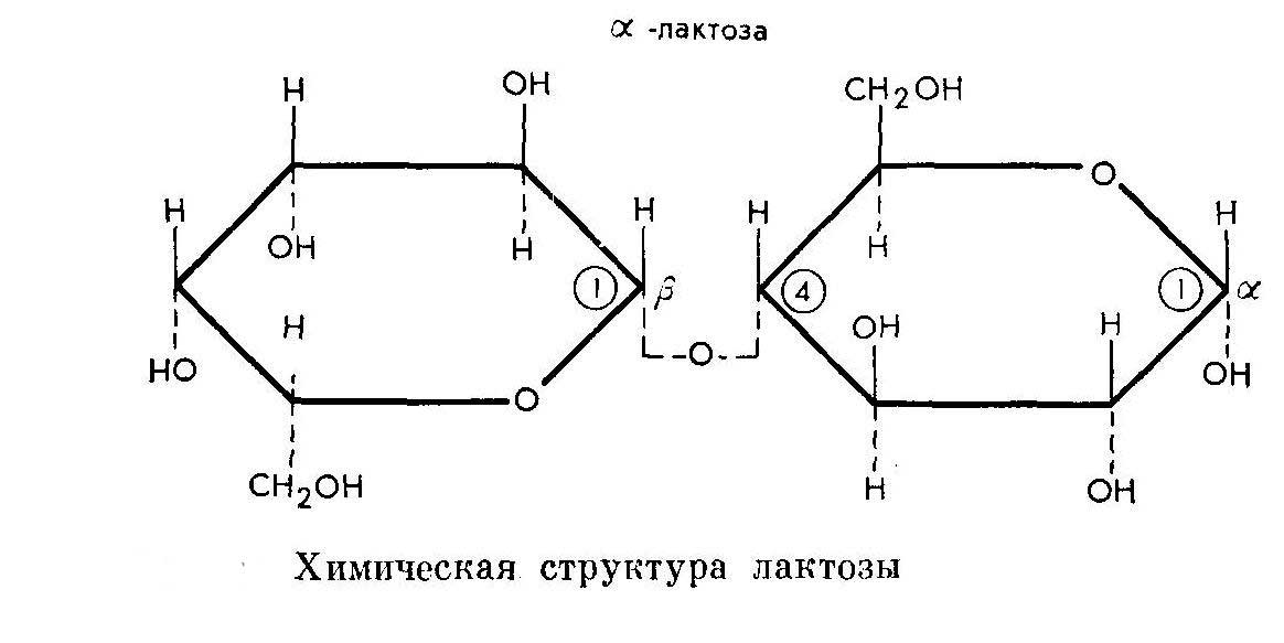 Лактоза: состав вещества, в каких продуктах содержится