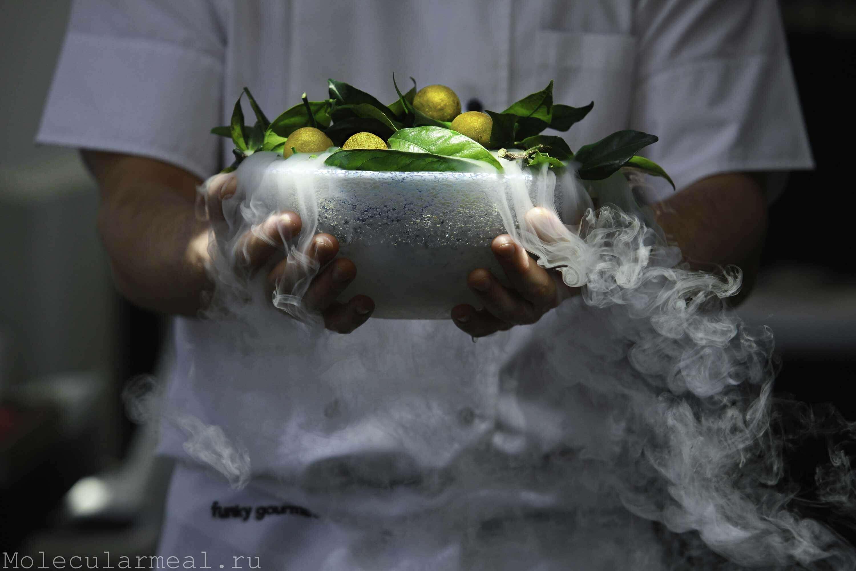 кулинарное шоу молекулярная кухня мороженое на жидком азоте